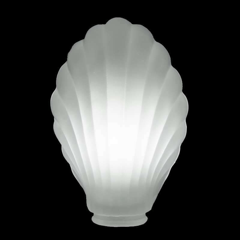 1447 S Shaped Etched Desk Lamp Shade